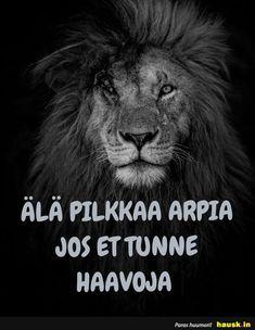 Ala pilkkaa.. Badass, Life, Animals, Animales, Animaux, Animal, Animais