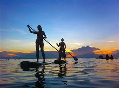 Paddleboarding provides a unique way to explore Koh Tao and the safe, warm sea around the island. Whatever your level of skill and training, Paddleboarding is a great way to relax on a board during the warm sunny days or at sunset when the sky lights up with an array of color. Time Activities, Water Activities, Paddle Board Yoga, Hawaii Surf, Paddleboarding, Pub Crawl, Types Of Yoga, Ways To Relax, Beach Bars