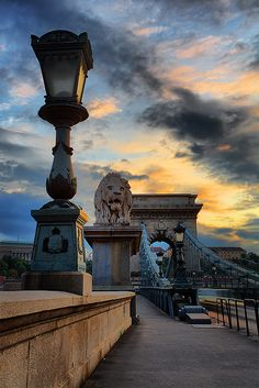 One of the mighty lions guarding the Chain Bridge in Budapest