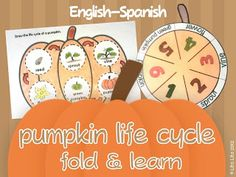 Learning in Spain: Halloween in my classroom and BOO!