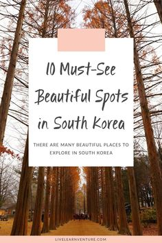 You need to see these beautiful spots in South Korea! #travel #traveltips #Asiatravel #PlacesToVisit