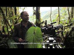 Colombia casa de las orquídeas