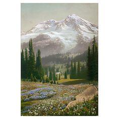 An alpine meadow flowers in abundant color beneath the Cascade Range. . Photographer: Franklin Price Knott. Print available