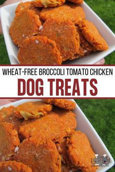 (wheat-free) broccoli tomato chicken Dog Treat Recipes, Dog Food Recipes, Chicken Recipes, Homemade Dog Treats, Healthy Dog Treats, Chicken Broccoli Cheese, Chicken For Dogs, Biscuit Recipe, Cheese Recipes