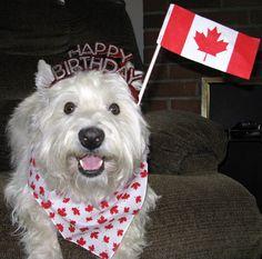 https://flic.kr/p/6AYcna | Happy Birthday Canada!!! 19/52 | July 1, 2009 -- Canada's Birthday -- 142 years old. Happy Canada Day to all!!