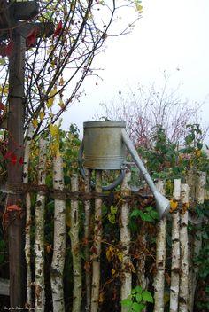 Fall www.facebook.com/DerGruneDaumenTheGreenThumb?fref=ts