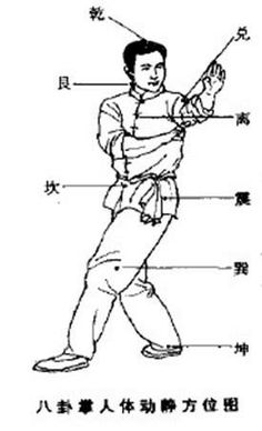 / Xing Yi Quan, Tai Chi Chuan, Book Of Changes, Chinese Martial Arts, I Ching, Acupressure Points, Qi Gong, Taoism, Martial Artists