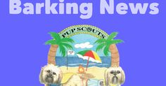 Pup Scouts January 2015  Barking News Magazine