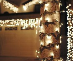 lights with bows<3