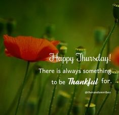 Happy Thursday! There is always something to be thankful for. #Thursdaymorningwishes #Thursdaypositivequotes #Happythursdayquotes #Thursdayquotesforwork #Goodmorningthursday #Morningthursdayquotes #Morningwishesquotes #Goodmorningwish #Beautifulmorningwishes #Thursdayquotes #Thursdaymorningquotes #Thursdaysayings #Goodmorningquotes #Goodmorningsayings #Positiveenergy #Inspirationalmorningquotes #Inspirationalquotes #Dailyquotes #Everydayquotes #Instaquotes #therandomvibez Thursday Morning Quotes, Happy Thursday Quotes, Morning Wishes Quotes, Thankful Thursday, Good Morning Wishes, Good Morning Quotes, Work Motivational Quotes, Work Quotes, Positive Quotes