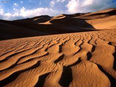 Sahara Desert Erg Chebbi Morocco Sand Dunes Hot Heat Camel Trek