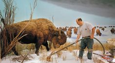 Repairing nature, on the other hand, is a bit more jarring. This is likely why Richard Barnes' photographs of natural history dioramas in various state of repair have drawn attention since they were collected in a book of his work Animal Logic, released in the fall.  (c. 2010)
