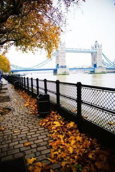 Autumn, The Thames, London, England. I have stood near that spot so many times, and it still takes my breath away. I miss my London.