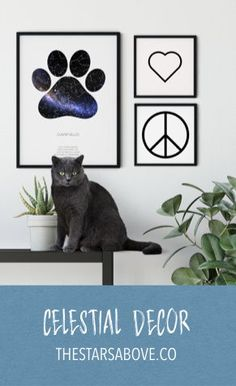 Gifts For Pet Lovers, Cat Lovers, Moon Zodiac, Graphic Prints, Art Prints, Sky Images, Cat Signs, Star Sky, Bedroom Office