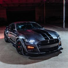 Ford Mustang Gt500, Shelby Mustang, Ford Shelby, Mustang Cars, Ford Gt, Luxury Sports Cars, Cool Sports Cars, Best Luxury Cars, Sport Cars