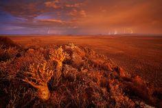 KAROO BLITZKRIEG - Little Karoo, Western Cape, South Africa