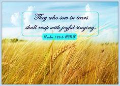 Psalms Verses, Uplifting Bible Verses, Psalm 126 5, Singing, Encouragement