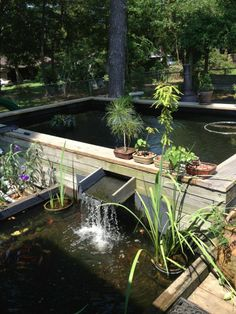 Koi Pond - Baton Rouge, LA.  Our koi pond at the top... waterfall into goldfish pond at the bottom.  Dogs can cool off in the smaller pond also.