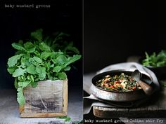 Cooking | Baby Mustard Greens Indian Stir Fry ... #freshproduce #NorthIndia #vegetarian #stirfry #healthy