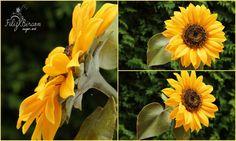 Sugar Sunflower