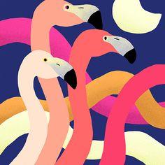I LIKE - Art / Flamingo — Designspiration