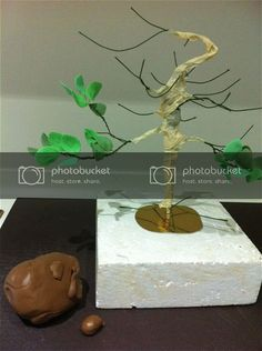 Beautiful Cake Pictures, Beautiful Cakes, Twisted Tree, Tree Cakes, Gum Paste, Cake Decorating, Place Card Holders, Projects, Crafts