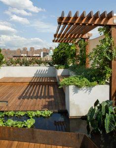 Pergola Dachterrasse sichtschutz pergola dachterrasse holzboden mini teich bauen design