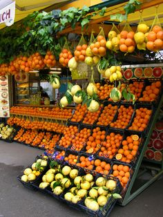 Oranges and lemons sold in a booth in Pompeii, Italy