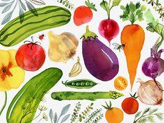 Margaret Berg Art: Veggie+Garden