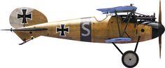 Albatros D.Va of Flieger Squid; Jasta 2 (Virtual) Pronville, Seine-des-Côte ca. 1917