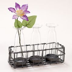 Love thiis 3 Bud Vases with Wire Caddy from World Market