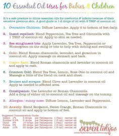 Wonderful Ginger Essential Oil Tips And Techniques For ginger essential oil uses Essential Oils For Nausea, Diluting Essential Oils, Essential Oils For Babies, Are Essential Oils Safe, Ginger Essential Oil, Essential Oil Uses, Young Living Essential Oils, Yl Oils, Aromatherapy Oils