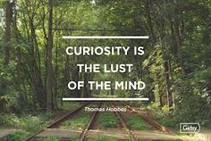 curiosity quote - Thomas Hobbes