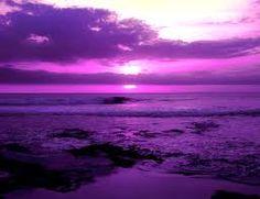purple sunsets...