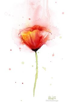 Poppies Watercolor Art Prints Red Poppy Art Prints Poppy Wall