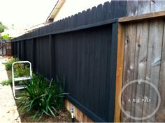 Behr's 'Slate' stain for the fence
