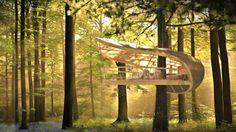 No Canadá, hóspedes de Eco Resort se acomodam em casa na árvore - Casa