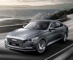 2015 Hyundai Genesis. Beautiful.