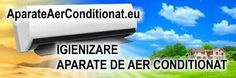 Service reparatii curatare igienizare aer conditionat. Tel 0723000323