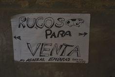 Advertencia en un corral de la Hacienda San Antonio (Cajamarca). Según parece los cuyes se comieron la H.