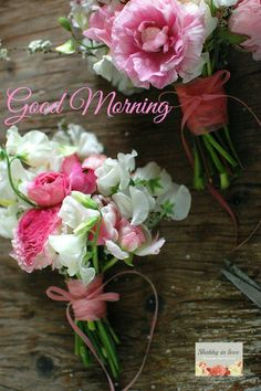 Good Morning to ALL my Pinterest pals and followers! Have a wonderful week!! Debby :) xxxx oooo ♥