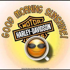 Good Morning all Harley Davidson Posters, Harley Davidson Images, Harley Davidson Wallpaper, Used Harley Davidson, Harley Bikes, Harley Davidson Motorcycles, Happy Birthday Harley, Steve Harley, Harley Davison
