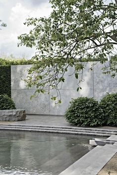 Our Best in Show 2014 . Chelsea Flower Show - Texture Colour and Light Our Best in Show 2014 . Chelsea Flower Show - Texture Colour and Light Terrace Garden, Water Garden, Garden Walls, Landscape Walls, Landscape Design, Outdoor Pool, Outdoor Gardens, Ar Fresco, Pool Water Features