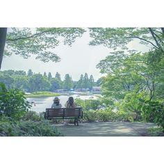 【shinoogawa0325】さんのInstagramの写真をピンしています。《『太陽×青空×深緑』  ひみつの女子会  昭和記念公園より  #写真が好きな人と繋がりたい  #カメラが好きな人と繋がりたい  #ファインダー越しの私の世界 #写真 #photooftheday #photo  #eoskiss #canon #eoskissx7i #一眼レフ #公園 #林 #緑 #blue #forest  #nature_perfection #naturephotography #leafs #naturelovers  #ポートレート #おさんぽ #daytrip  #東京カメラ部 #カメラ女子 #カメラ初心者 #portrait #portraitphotography #昭和記念公園》