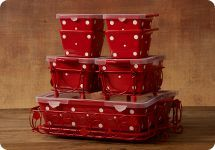 Temp-tations 13 pc on QVC $54.84 in Red Polka Dot