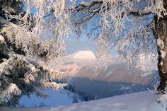 Eleonorik — «зима 2 (363).jpg» на Яндекс.Фотках