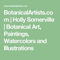 BotanicalArtists.com | Holly Somerville | Botanical Art, Paintings, Watercolors and Illustrations