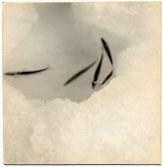 Yamamoto Masao / 山本昌男 A Box of Ku / 空の箱 via