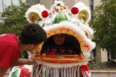 Inside the lion Lion Dance, Toronto, Birthday Parties, Anniversary Parties, Birthday Celebrations, Birthdays