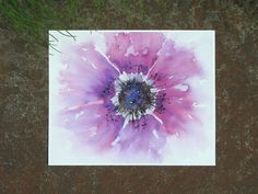 This bold and vibrant watercolor flower print of my original painting will surely brighten any room! A gorgeous shade of ombre violet, it really looks wonderful in a set of prints or as part of a gallery art wall. Size: 8x10 inches. Signed and dated on the back. Printed on 100% cotton rag